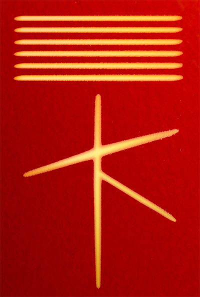 Transformationalist symbol
